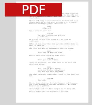 Drehbuch-Beispiel als PDF